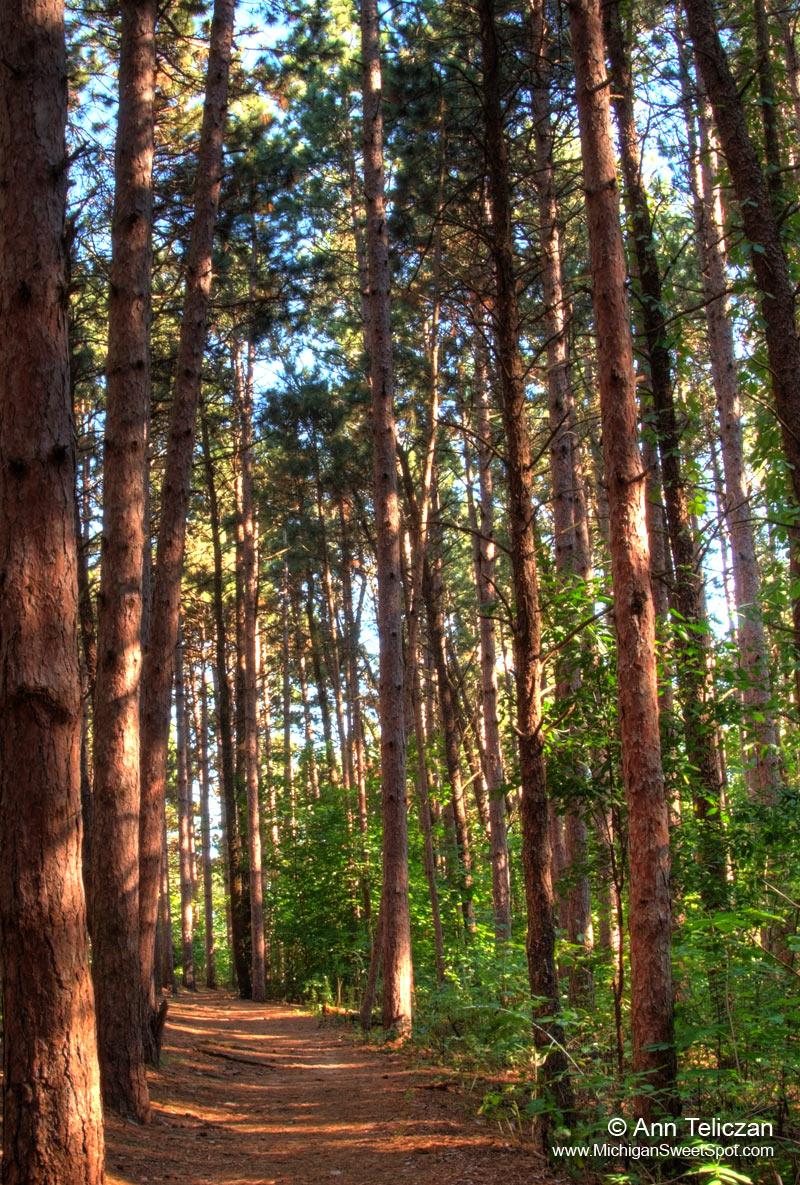Warren Townsend Park Hiking and Biking Trails