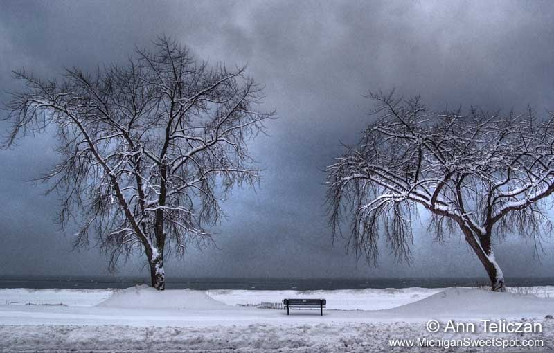 Solitude Along the Winter Lakeshore