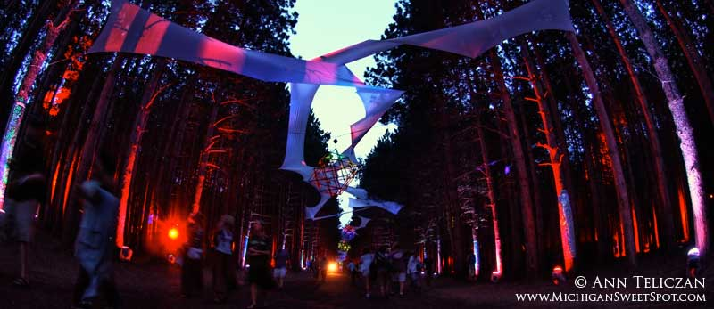 Rothbury's Music Festival Sherwood Forest at Night