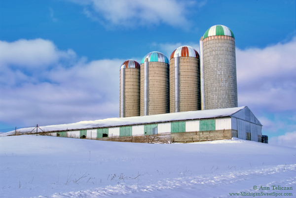 Who Knew Farm Silos Were So Pretty?